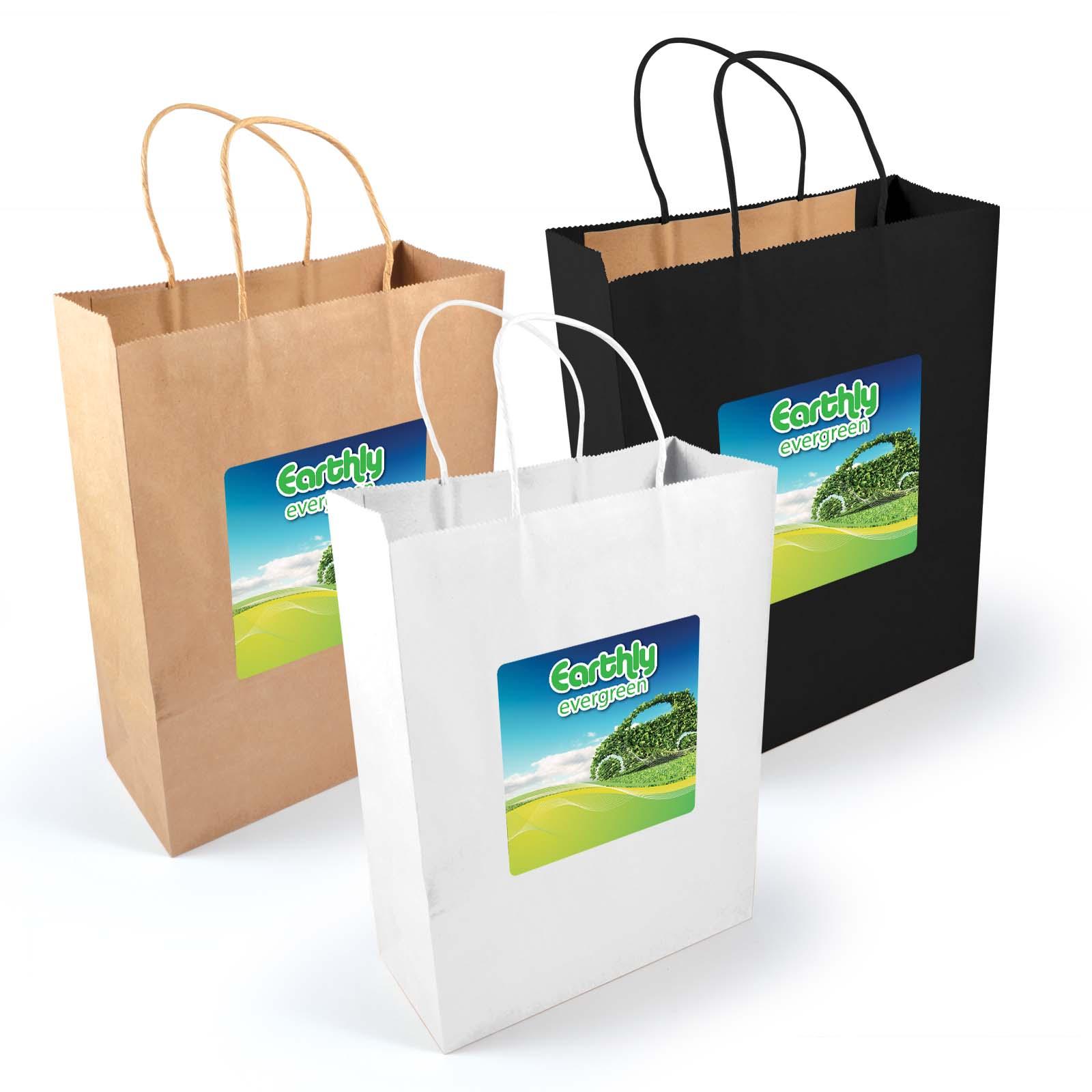 Express Paper Bag Large